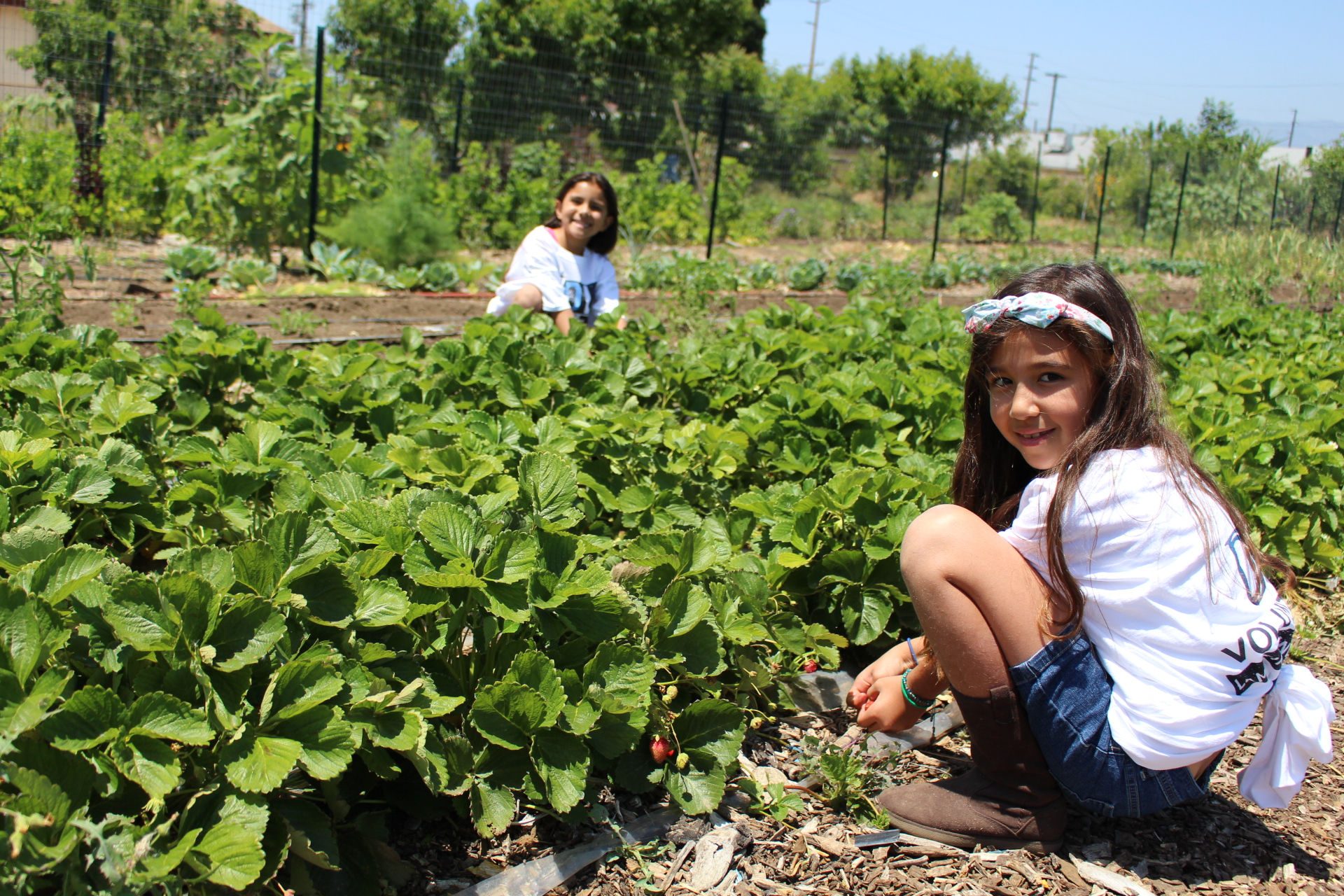 Developing Neighborhood Agriculture Initiative child volunteers gardening for healthier communities